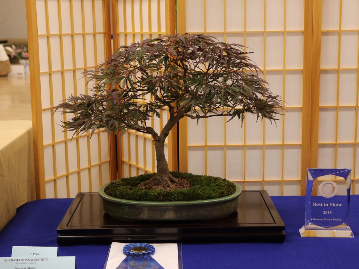 Alabama Bonsai Society 2018 Spring Show
